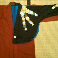 平成二十九年五月  弥生の花浅草祭 悪玉 衣装