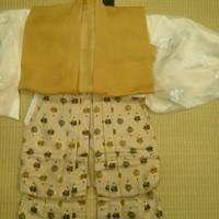 平成二十九年五月  弥生の花浅草祭 武内宿禰 衣装