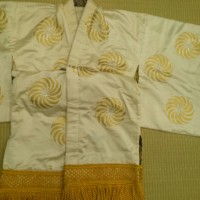 平成二十九年五月  弥生の花浅草祭 獅子の精 衣装